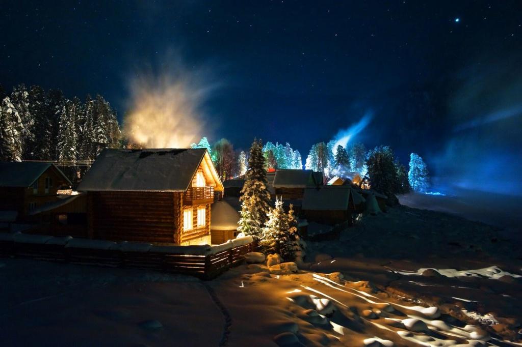 фото новогодней ночи в природе для собак